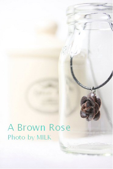 Brown Rose.jpg