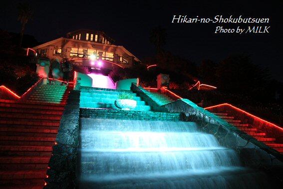 光の植物園_カスケード.jpg