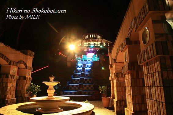 光の植物園_宮殿.jpg