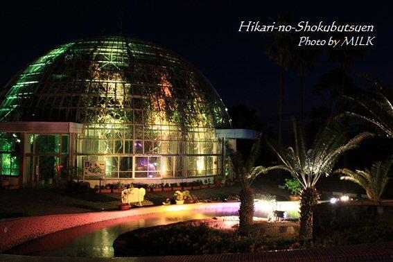 光の植物園_温室ドーム.jpg