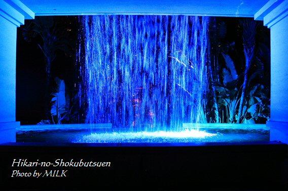 光の植物園_滝の裏_正面.jpg