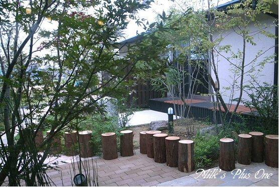 木のコトカフェ中庭.jpg