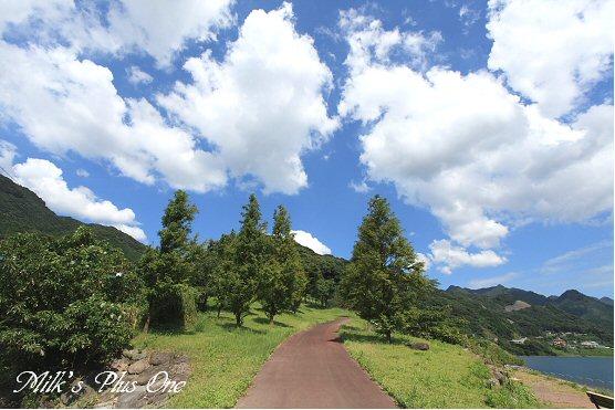 萱瀬ダムへの道.jpg