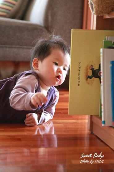 赤ちゃん_絵本はいはい.jpg