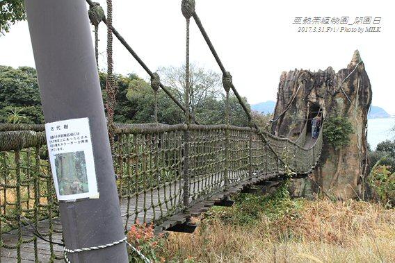 長崎県亜熱帯植物園閉園日23.jpg