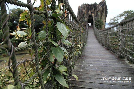 長崎県亜熱帯植物園閉園日25.jpg
