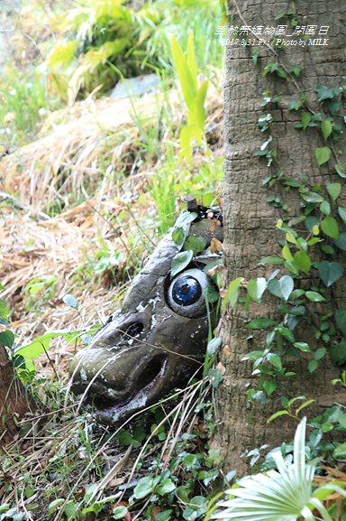 長崎県亜熱帯植物園閉園日37.jpg