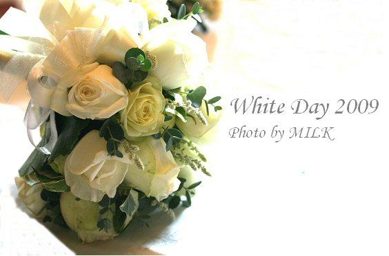 White Day W1.jpg
