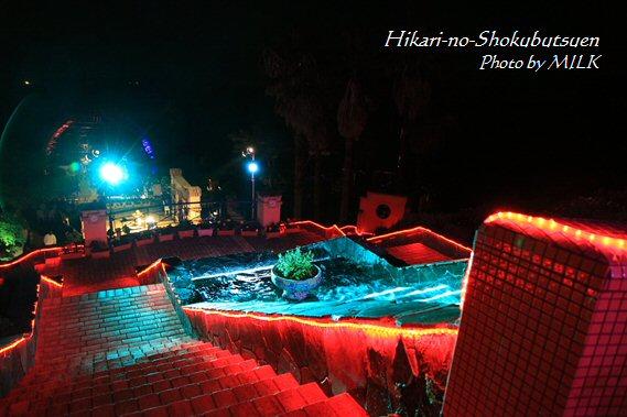 光の植物園_赤の階段.jpg