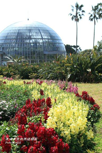 長崎県亜熱帯植物園閉園6.jpg