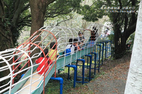 長崎県亜熱帯植物園閉園前日10.jpg