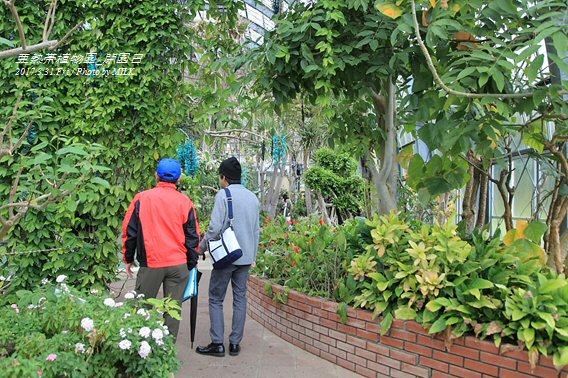 長崎県亜熱帯植物園閉園日12.jpg