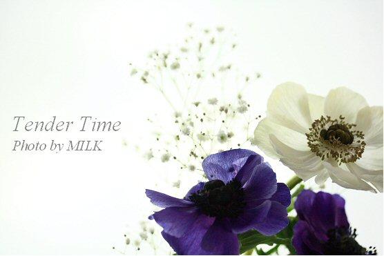 tender time 1.jpg