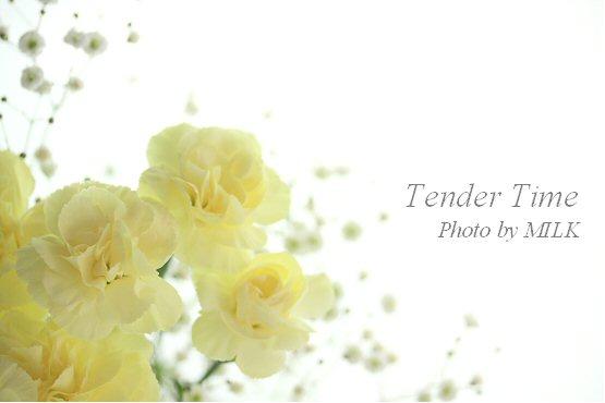 tender time 2.jpg