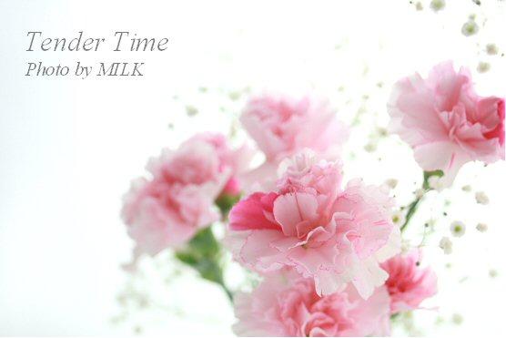 tender time 3.jpg