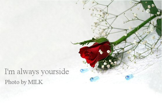 yourside.jpg
